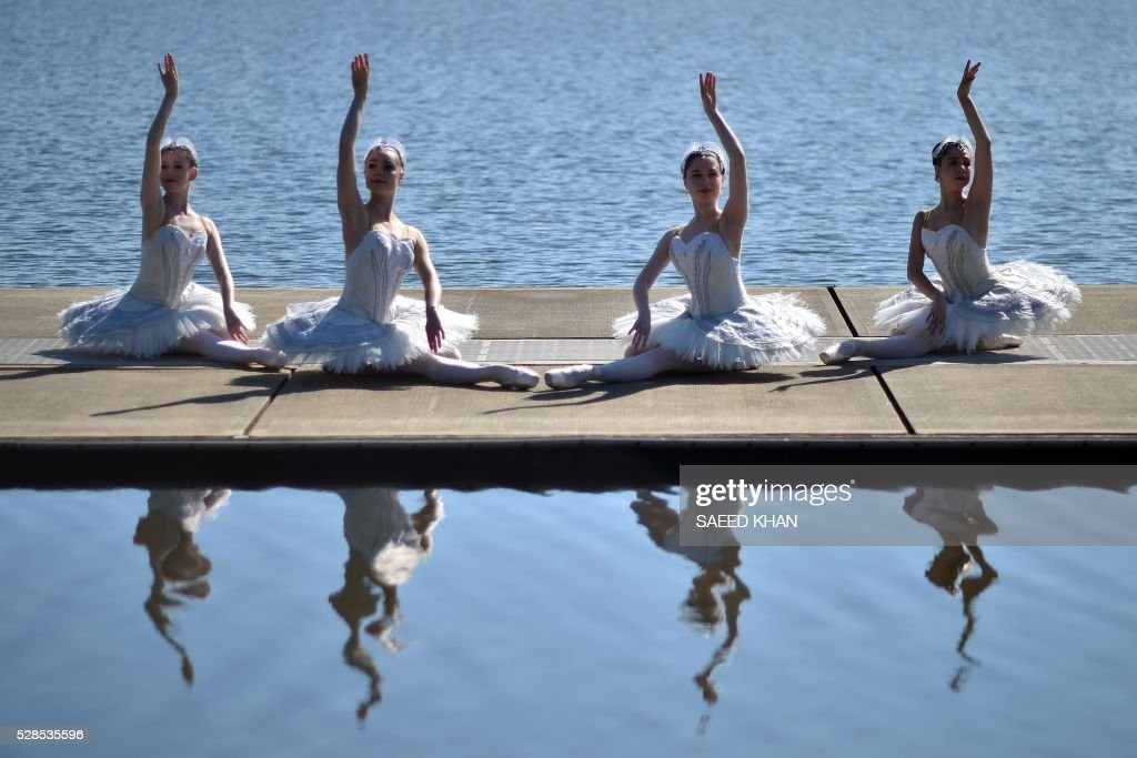 Australian Ballet dancers in white swan tutus pose during a media on a 20-metre barge in Penrith Lakes in western Sydney on May 6, 2016. / AFP / SAEED
