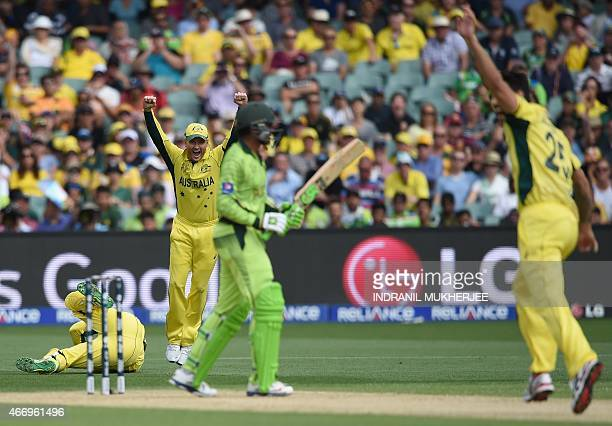 Australian captain Michael Clarke and bowler Mitchell Johnson celebrate as wicketkeeper Brad Haddin takes a catch to dismiss Pakistani batsman Haris...
