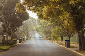 Australian foggy autumn morning in Adelaide suburbs with rubbish recycling bins on the kerb