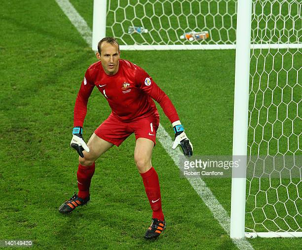 Australian Mark Schwarzer looks on during the Group D 2014 FIFA World Cup Asian Qualifier match between Australia and Saudi Arabia at AAMI Park on...