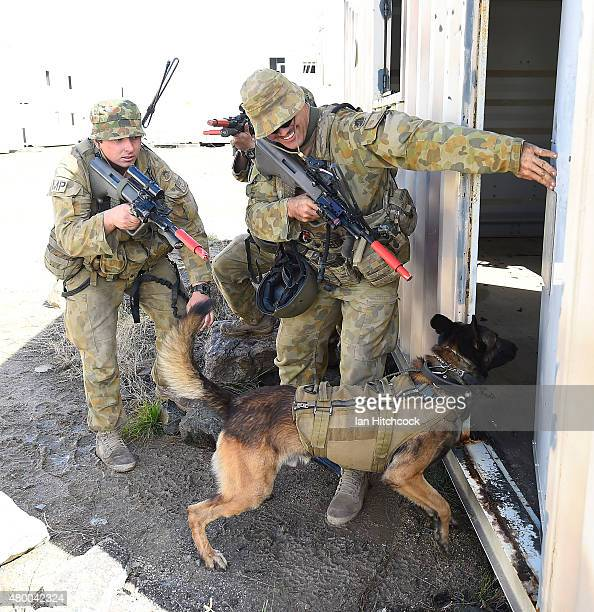 Australian soldiers from the 1st Military Police Battalion conduct a breach in an urban environment as part of exercise Talisman Sabre on July 9 2015...