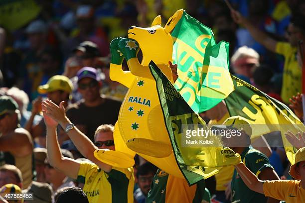 Australian supporters in the crowd cheer during the 2015 Cricket World Cup Semi Final match between Australia and India at Sydney Cricket Ground on...