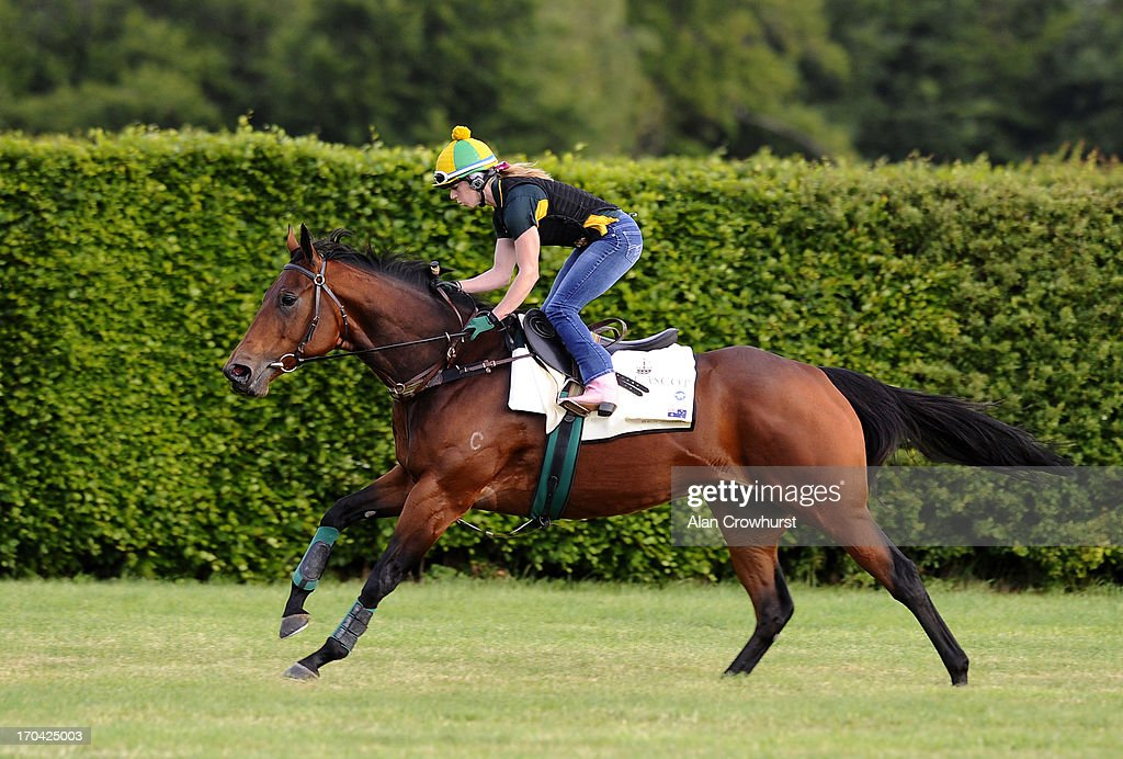 Australian trained Sea Siren on the Limekilns gallop on June 13, 2013 in Newmarket, England.