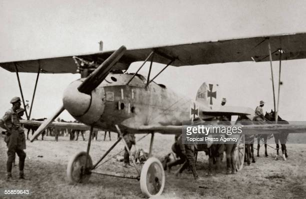 Australian troops with a captured German Albatross DIII fighter Palestine 7th March 1918