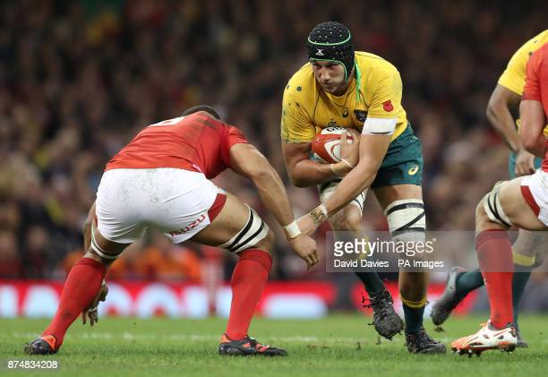 Australia's Adam Coleman during the Autumn International at the Principality Stadium Cardiff PRESS ASSOCIATION Photo Picture date Saturday November...