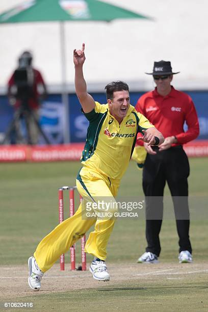 Australia's bowler Daniel Worrall celebrates the dismissal of Ireland batsman Gary Wilson during Australia against Ireland ODI cricket match on...