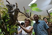 Australia's Foreign Minister Julie Bishop and her Singaporean counterpart K Shanmugam look at a koala after officiating the opening of a new exhibit...
