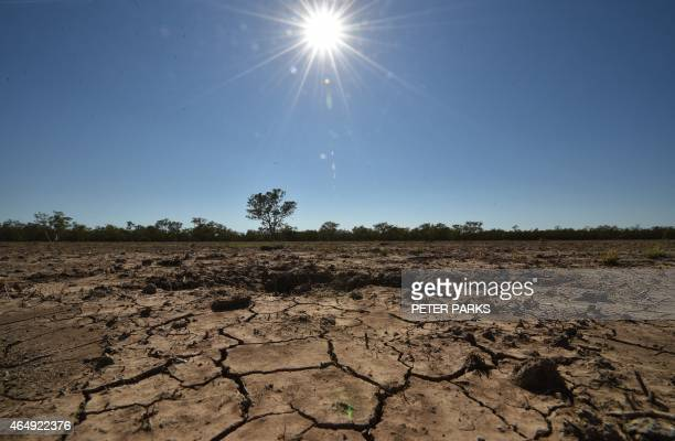 AustraliaweatherdroughtfarmingFEATURE by Glenda KWEK In this photo taken on February 11 the sun scorches an already cracked earth on a farm in the...