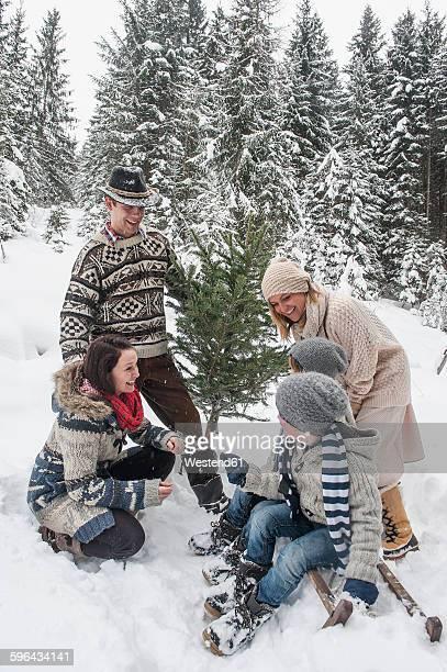 Austria, Altenmarkt-Zauchensee, happy family with Christmas tree in winter forest