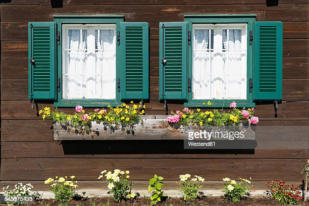 Austria, Burgenland, Deutsch Schuetzen, wooden house facade with two windows and a flower box