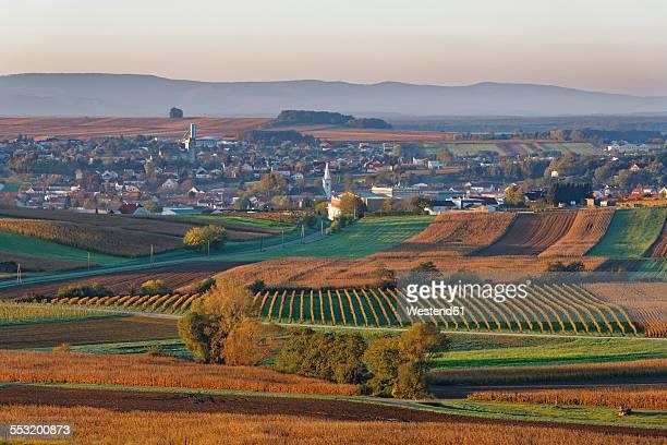 Austria, Burgenland, Oberpullendorf District, Neckenmarkt, in autumn