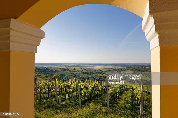Austria, Burgenland, Oberwart District, View from Kellerstoeckl over vineyard to Eisenberg an der Pinka