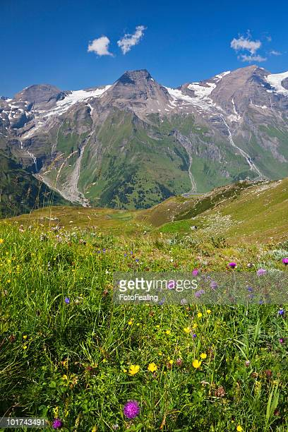 Austria, Mountain scenery, Mount Breitkopf, Hohe Dock and Vorderer Bratschenkopf