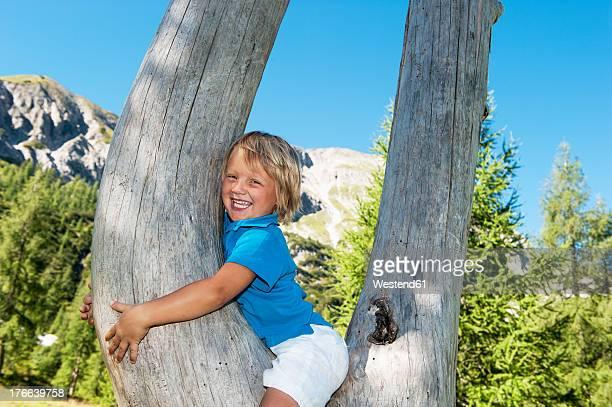 Austria, Salzburg Country, Boy sitting in tree, smiling