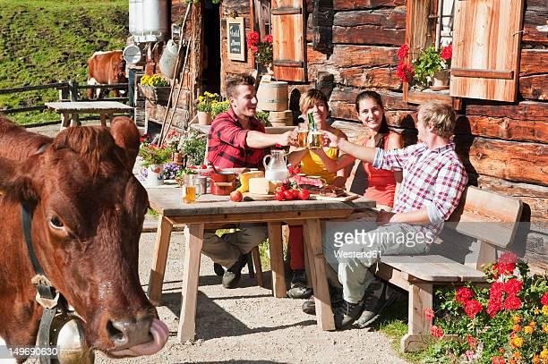 Austria, Salzburg County, Men and women sitting and drinking at alpine hut