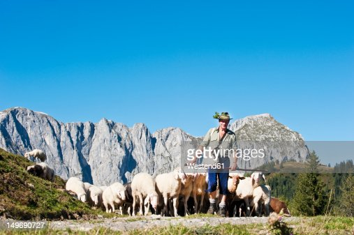 Austria, Salzburg County, Shepherd herding sheep on mountain