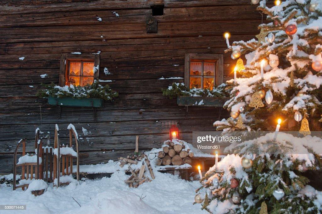 Austria, Salzburg State, Altenmarkt-Zauchensee, facade of wooden cabin with lightened Christmas Tree in the foreground