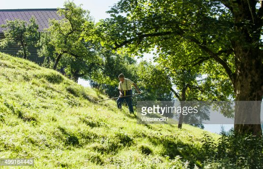 Austria, Salzburg State, Flachau, Senior farmer in summer meadow