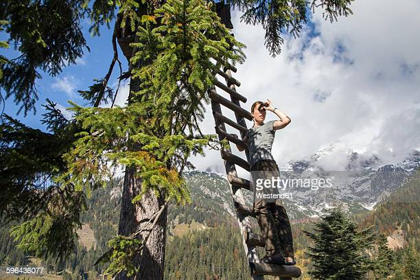 Austria, Salzburg State, Maria Alm, woman on ladder at raised hide looking through binoulars