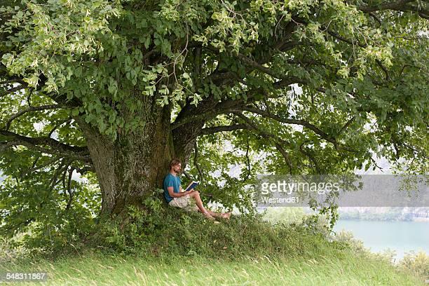 Austria, Salzkammergut, Mondsee, man reading a book under an old lime tree