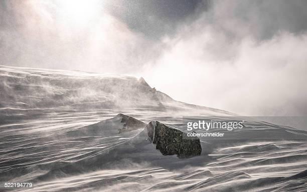 Austria, Snow storm forming snowy landscape