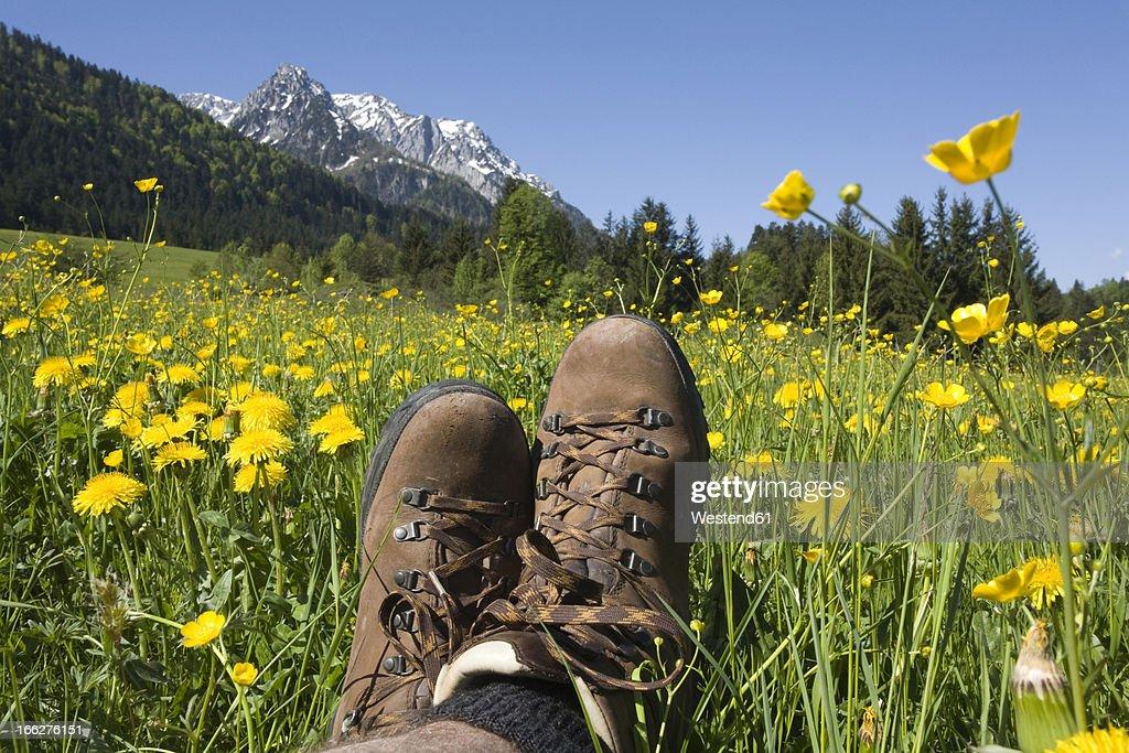 Austria, Tyrol, Kaisergebirge, Hiker relaxing on meadow, close-up