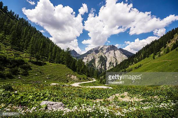 Austria, Tyrol, Karwendel mountains, Eng Alp