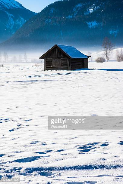 Austria, Tyrol, Lermoos, barn in snow