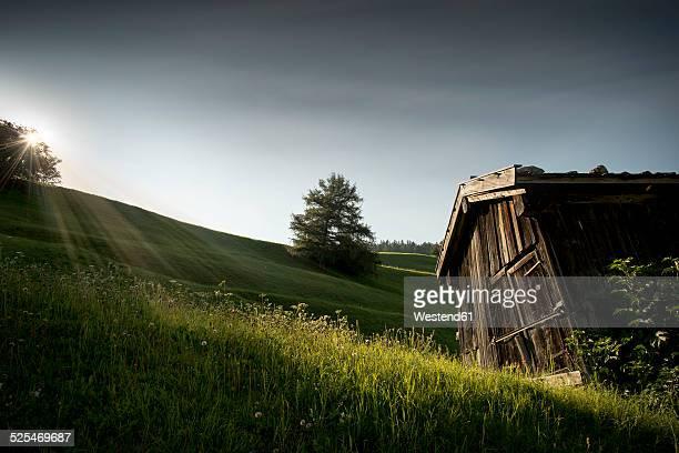 Austria, Tyrol, Matrei, Hay barn
