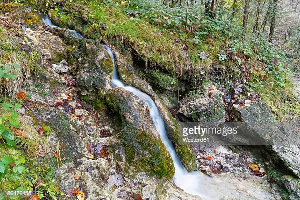 Austria, Vorarlberg, View of Burser Schlucht