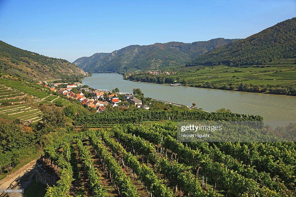 Austria, Wachau Valley, Spitz an der Donau