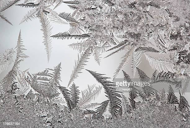 Austria, Window covered with  Ice crystal, close up