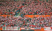 Austrian fansl during their EURO 2016 qualifing match between Austria and Montenegro in Vienna Austria on October 12 2014AFP PHOTO/JOE KLAMAR