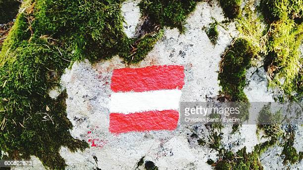 Austrian Flag Painted On Rock