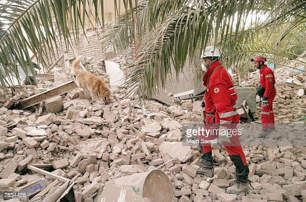 Austrian rescue workers and their dog search for victims December 28 2003 in Bam Iran An earthquake registering 65 on the Richter scale hit the...