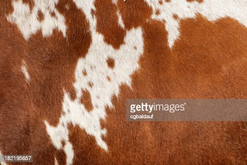 Authentic Cowhide