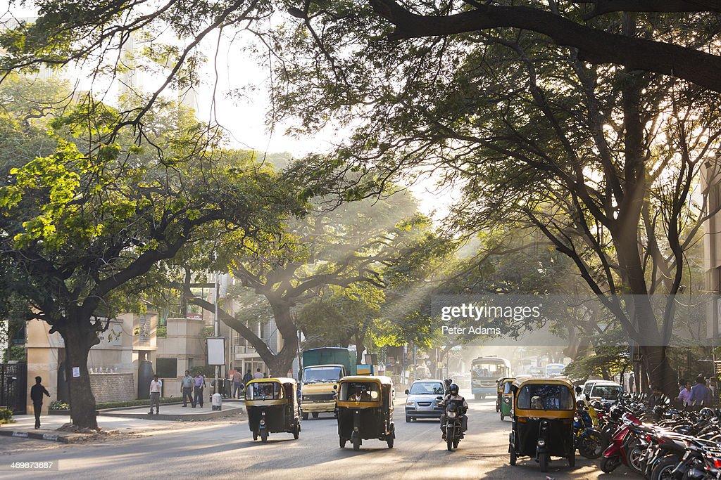 Auto Rickshaws, Tree Lined Street, Bangalore