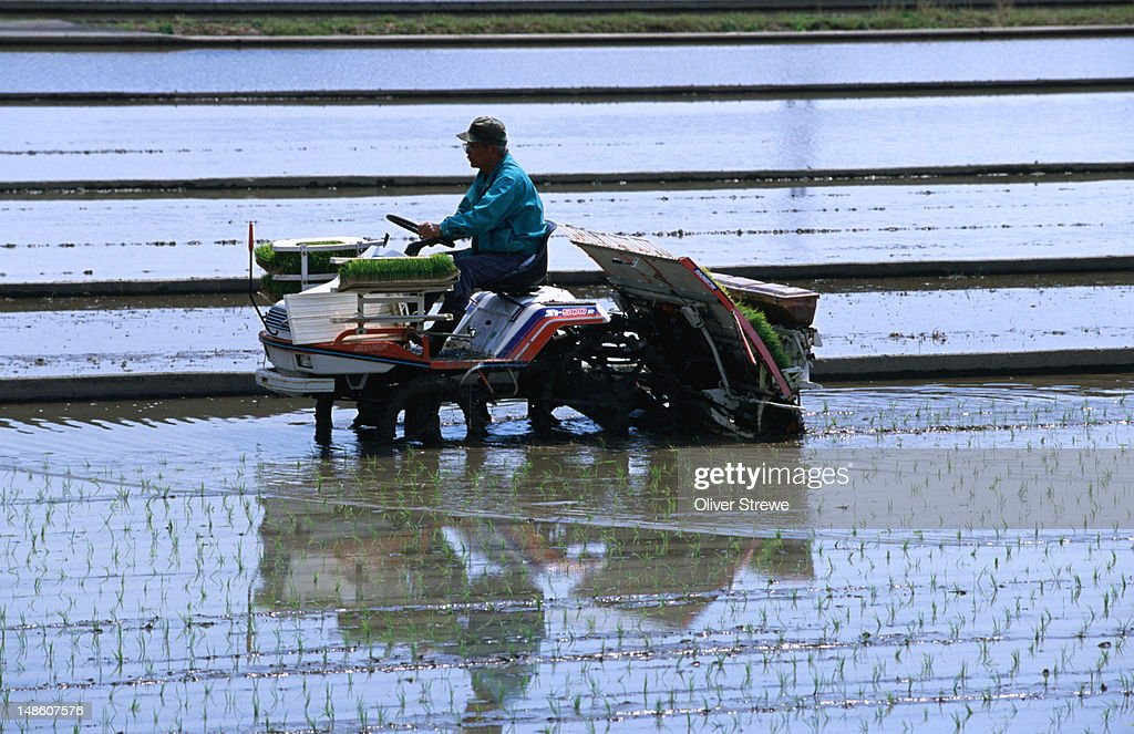 Automated rice planting in Kochi.