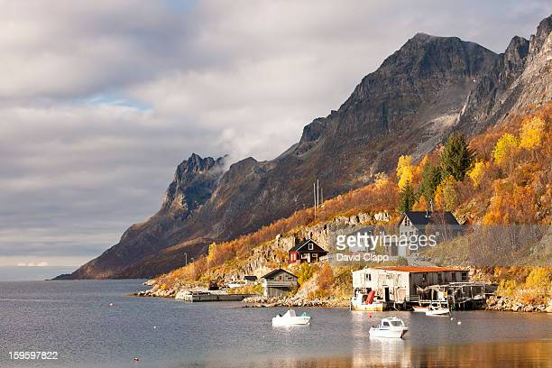 Autumn at  Ersfjordboton, Tromso, Norway