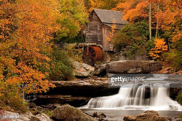 Autumn at The Mill