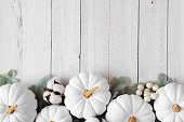 Autumn bottom border of white pumpkins and silver leaves over a rustic white wood background