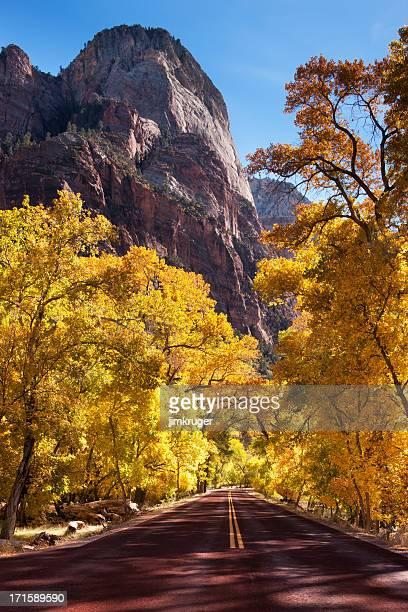 Automne route dans le canyon de Zion National Park.