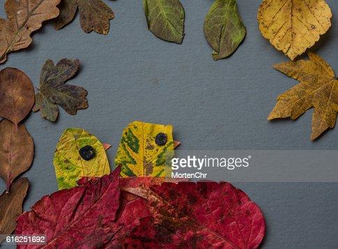 autumn chicks : Foto de stock