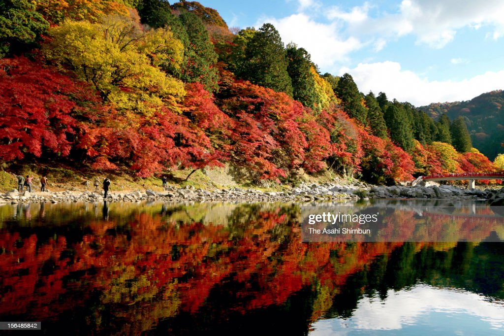 Autumn clours reflect at the Tomoe River at Korankei valley on November 15, 2012 in Toyota, Aichi, Japan.