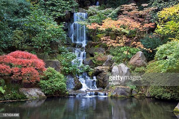 Couleur d'automne et la chute d'eau