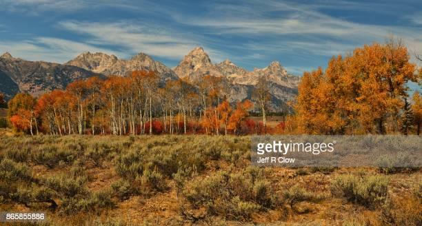 Autumn Color in Grand Teton National Park 2