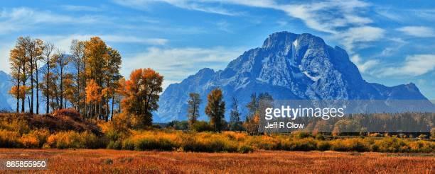 Autumn Color in Grand Teton National Park 4