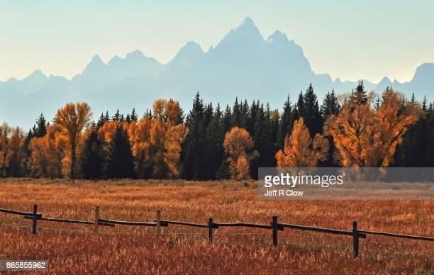 Autumn Color in Grand Teton National Park 5
