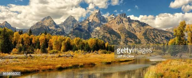 Autumn Color in Grand Teton National Park 7