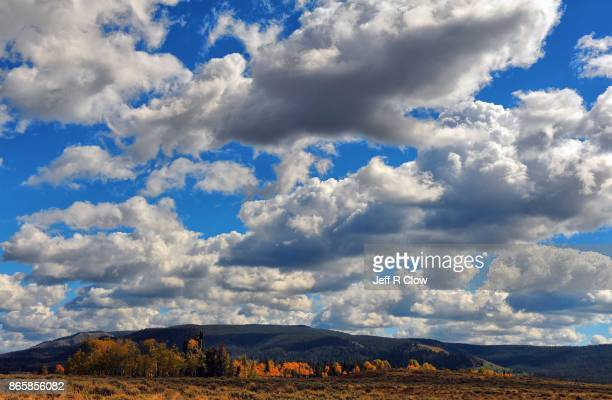 Autumn Color in Grand Teton National Park 9